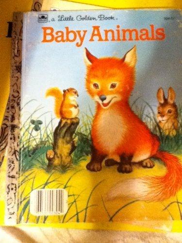9780307020505: Baby Animals (Little Golden Books)