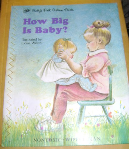 9780307107558: The Little Book (Baby's First Golden Book, Non Toxic/Wipes Clean)