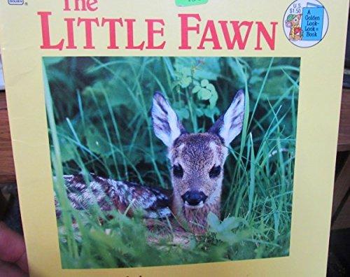 The Little Fawn: Bullaty, Sonja &