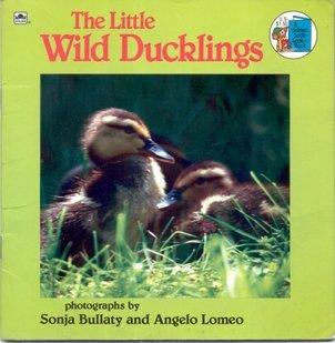 9780307118998: Little Wild Duckling (Look-Look)