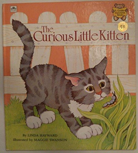 The Curious Little Kitten (Golden Storytime Book): Linda Hayward; Illustrator-Maggie Swanson