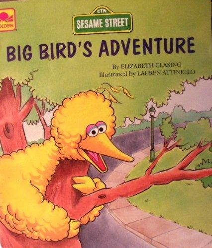 9780307141705: Big Bird's Adventure