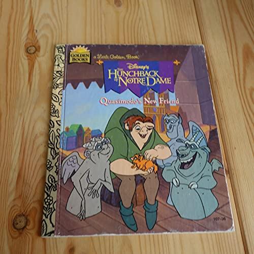 9780307302991: Disney's the Hunchback of Notre Dame: Quasimodo's New Friend (Little Golden Book)