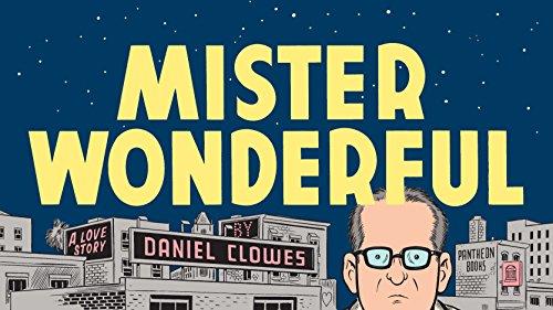 9780307378132: Mister Wonderful: A Love Story (Pantheon Graphic Novels)