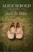 9780307392046: Casi la luna (Spanish Edition)
