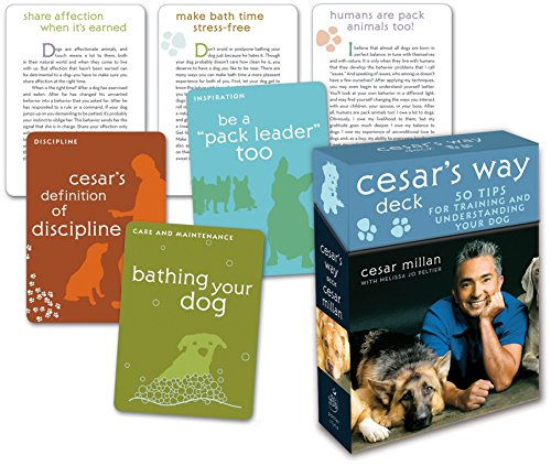 9780307396327: Cesar's Way Deck: 50 Tips for Training and Understanding Your Dog