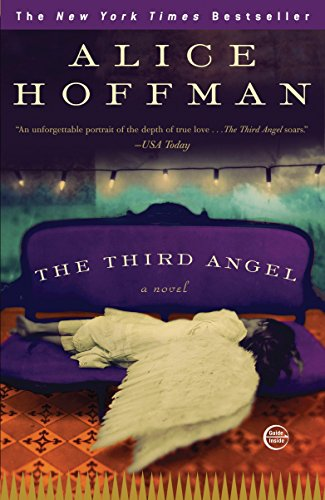 9780307405951: The Third Angel: A Novel