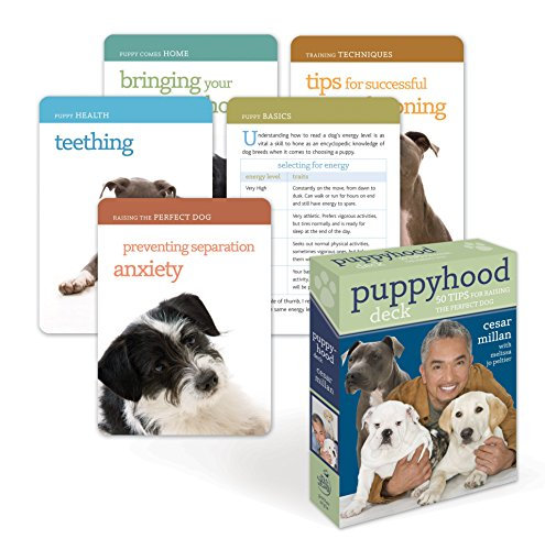 9780307463487: Puppyhood Deck: 50 Tips for Raising the Perfect Dog