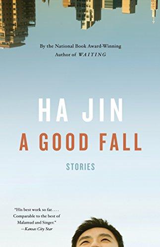 9780307473943: A Good Fall (Vintage International)