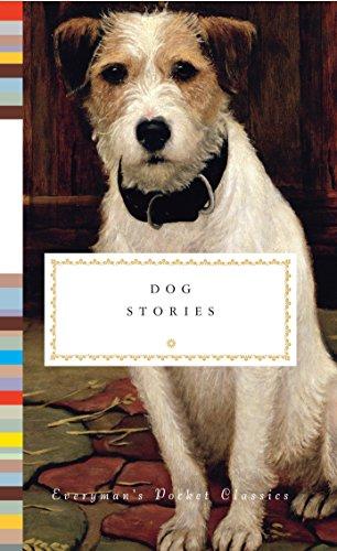 Dog Stories (Hardback or Cased Book)