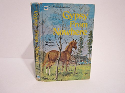 9780307615091: Gypsy from Nowhere