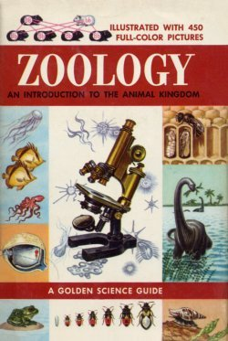 9780307635037: Zoology: An Introduction to the Animal Kingdom (A Golden Science Guide)