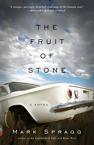 9780307739384: The Fruit of Stone (Vintage Contemporaries)