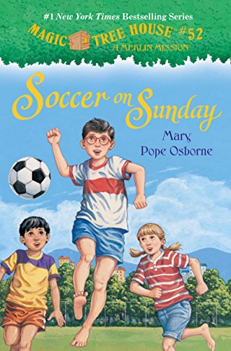 Soccer on Sunday (Hardback or Cased Book)