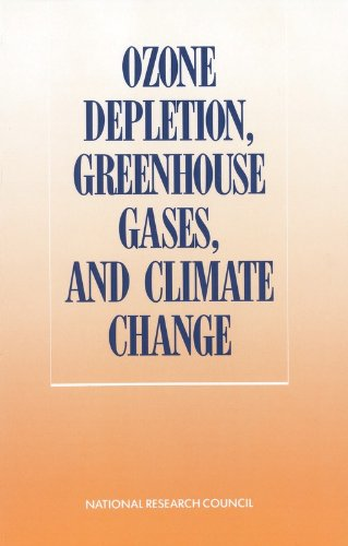 9780309039451: Ozone Depletion, Greenhouse Gases, and Climate Change