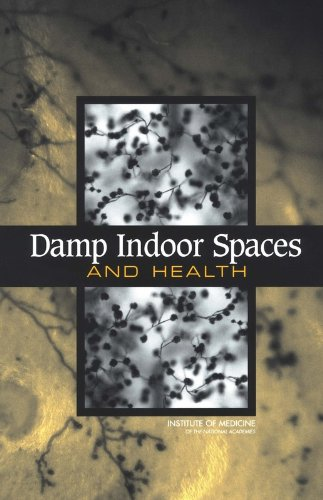 9780309091930: Damp Indoor Spaces and Health
