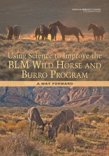 9780309264945: Using Science to Improve the BLM Wild Horse and Burro Program: A Way Forward
