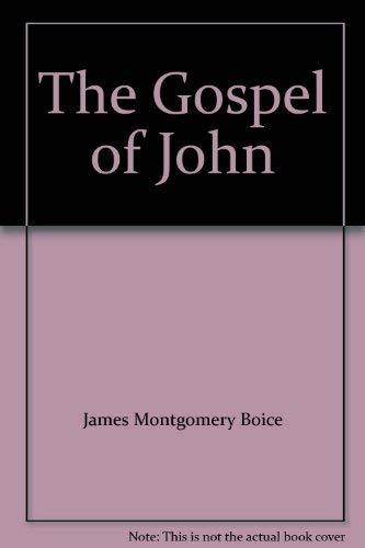 9780310214410: The Gospel of John