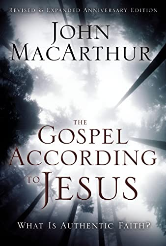 9780310287292: The Gospel According to Jesus: What Is Authentic Faith?