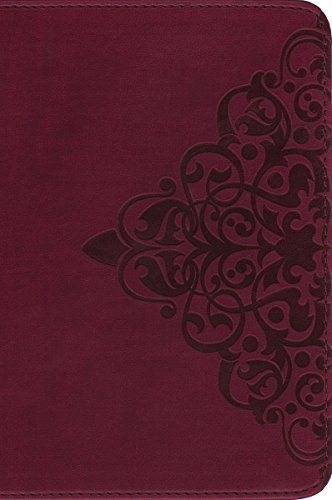 9780310402626: NIV, Single-Column Bible, Imitation Leather, Burgundy