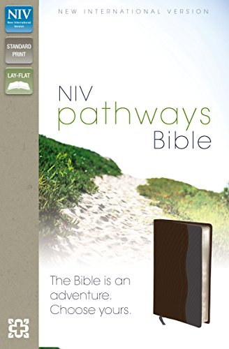NIV, Pathways Bible, Imitation Leather, Brown/Gray: Zondervan