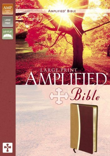 9780310410270: Amplified, Bible, Large Print, Imitation Leather, Tan/Burgundy, Lay Flat