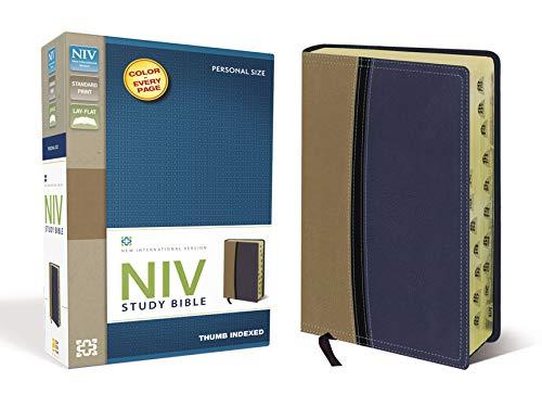 Study Bible-NIV-Personal Size: Zondervan