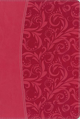 9780310432371: NIV, Essentials Study Bible, Imitation Leather, Pink: Easily Grasp the Fundamentals of Scripture through Lenses from 6 Bestselling NIV Resources