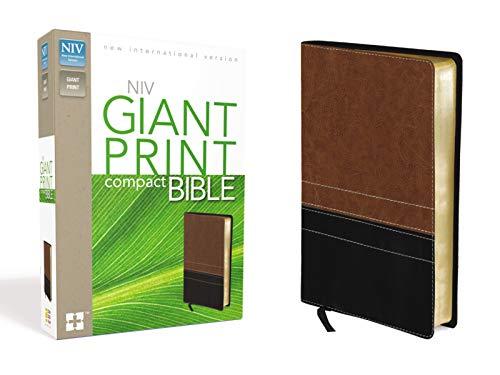 9780310435334: Compact Bible-NIV-Giant Print