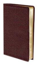 9780310435440: Niv Thinline Bible