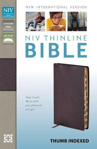 9780310435778: Holy Bible: New International Version, Burgundy, Bonded Leather, Thinline Bible