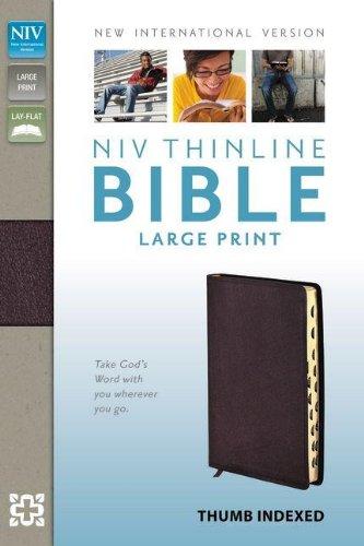9780310435952: Thinline Bible-NIV-Large Print
