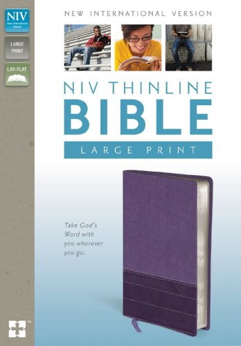 9780310435990: NIV, Thinline Bible, Large Print, Imitation Leather, Purple, Red Letter Edition