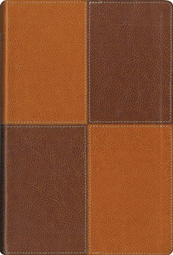 Thinline Reference Bible-NIV-Large Print (Imitation Leather): Zondervan Publishing