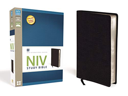 9780310437383: NIV Study Bible, Top-Grain Leather, Black, Red Letter Edition