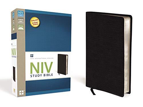 NIV Study Bible: Zondervan Publishing