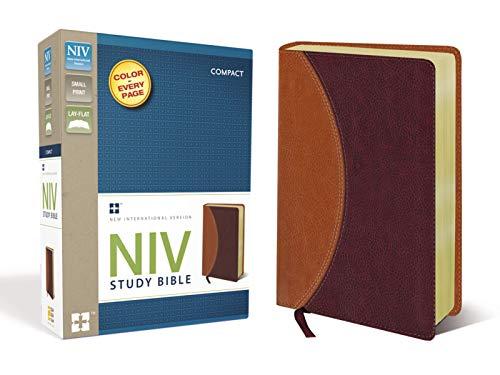 9780310438656: NIV Study Bible, Compact, Imitation Leather, Tan/Burgundy, Red Letter Edition (Small Print)