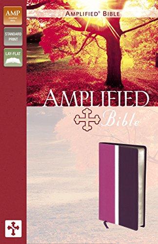 9780310439165: Holy Bible: Amplified Bible Dark Orchid / Deep Plum Italian Duo-Tone