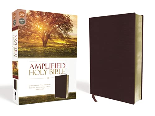 9780310443940: Amplified Holy Bible, Bonded Leather, Burgundy: Captures the Full Meaning Behind the Original Greek and Hebrew