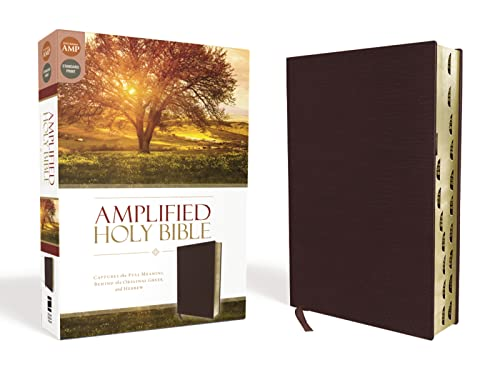 9780310443957: Amplified Holy Bible, Bonded Leather, Burgundy, Indexed: Captures the Full Meaning Behind the Original Greek and Hebrew