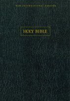 9780310607861: NIV Wide Margin Bible