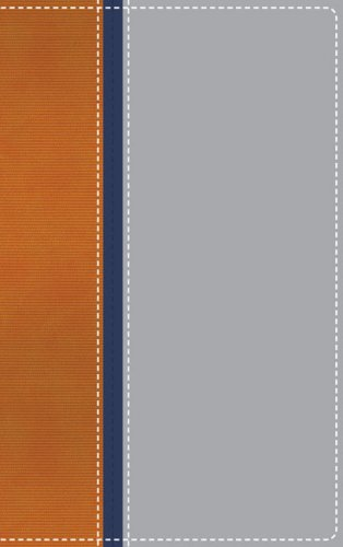 9780310609223: NIV Teen Study Bible Compact Orange/Navy/Gray Limited Edition- CBA