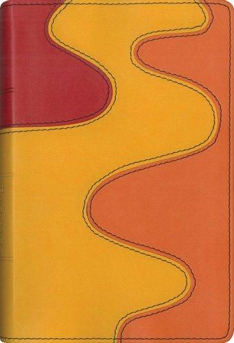 9780310707929: NIV Backpack Bible