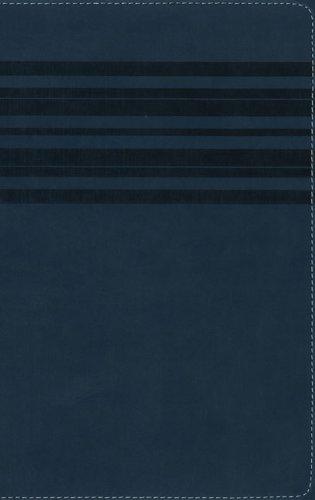 9780310720218: NIrV, Holy Bible, Large Print, Imitation Leather, Blue