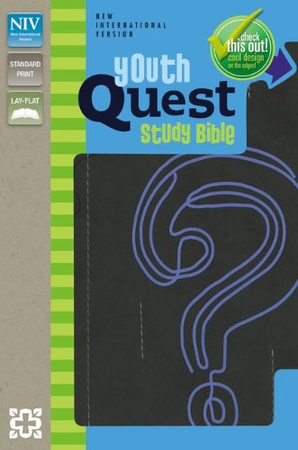 9780310733836: NIV, Youth Quest Study Bible, Imitation Leather, Gray/Blue: The Question and Answer Bible