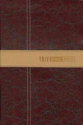 9780310934684: Zondervan TNIV Study Bible Zondervan TNIV Study Bible: Personal Size Personal Size
