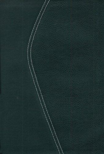 9780310934912: Zondervan TNIV Study Bible