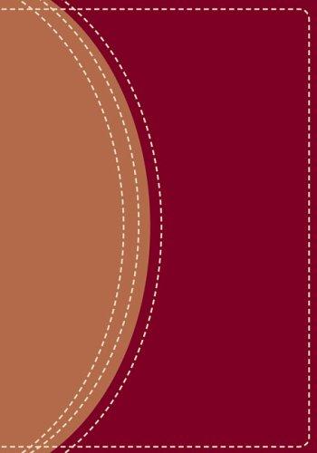 9780310936114: Zondervan NIV Compact Study Bible, Burgundy/Tan