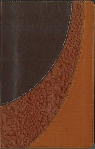 9780310936695: Amplified Bible LTD