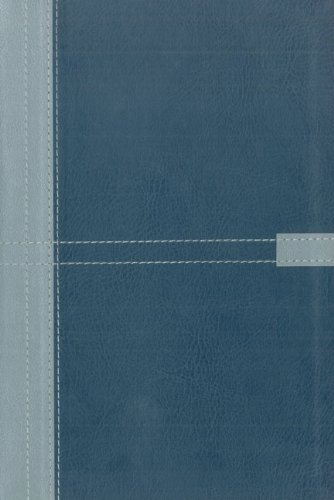 9780310938569: NIV Student Bible, Duo Tone Silver / Slate Blue